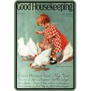 Schild Spruch Good Housekeeping Hühner 20 x 30 cm