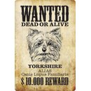 Schild Spruch Wanted dead or alive Yorkshire Reward 20 x...