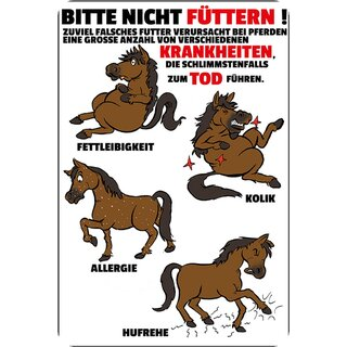 kreislaufkolik pferd