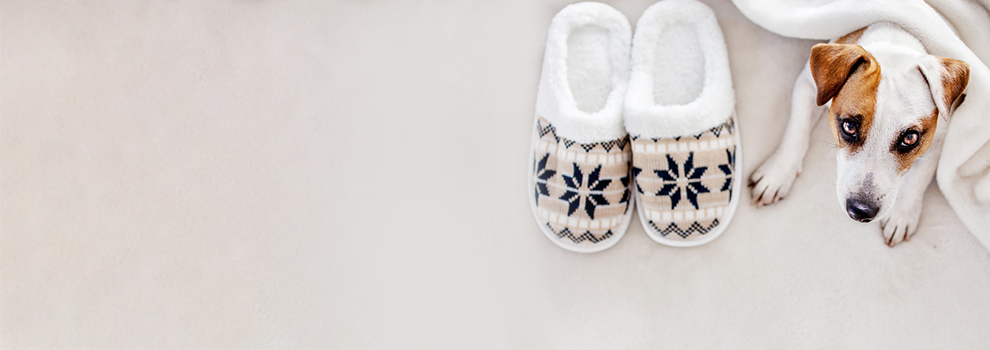 Hausschuhe und Pantoffeln